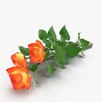 max bouquet roses