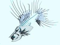 3d model fish cyber