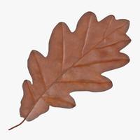 Oak Leaf Orange 01