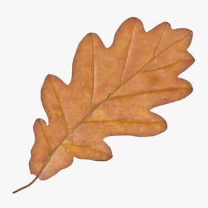 oak leaf yellow 3d model