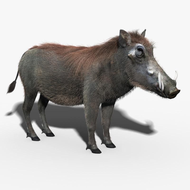 3d model warthog fur