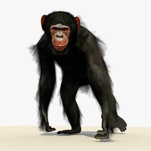 chimpanzee walking pose fur 3ds