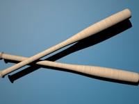 wood baseball bat 3ds