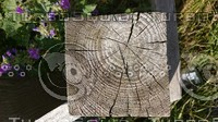 Wooden Fencepost - Top