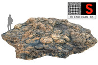 3d coral reef ground scan model