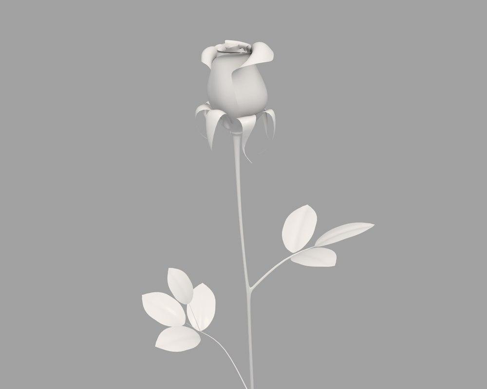 rose 3d c4d