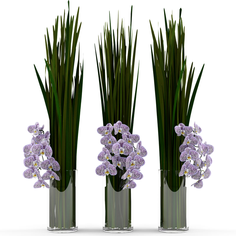 3ds max bouquet grass orchids vase