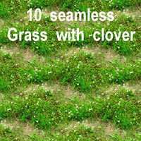 Grass with Clover Collection 3