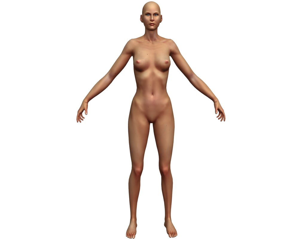 3ds max rigged female