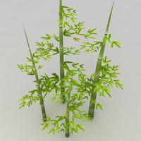 bamboo max