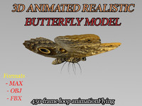 modeled butterfly animation flying wing max