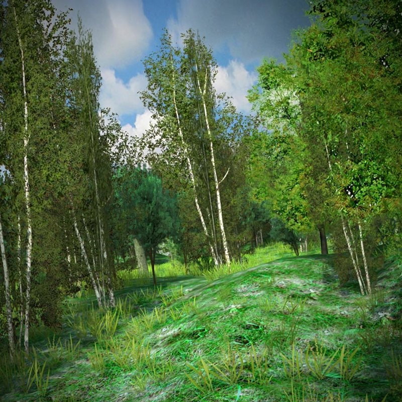 3d meadow ready games forest model