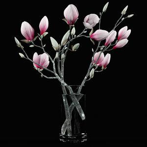 3d model bouquet magnolia flowers