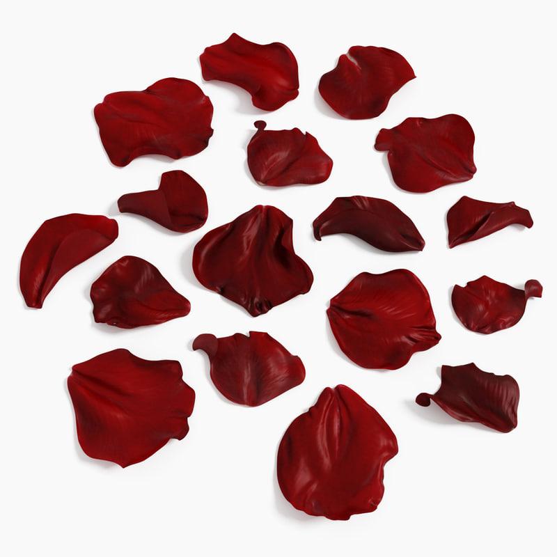 x realistic rose petals