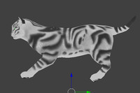 3ds max animation cat