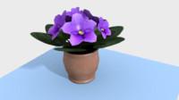 obj violets