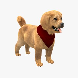 cute retriever puppy fur 3d model