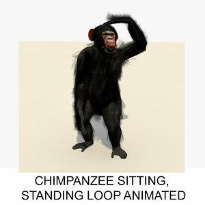 3d rigged chimpanzee animation chimp