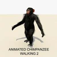 rigged chimpanzee walking animations 3d model