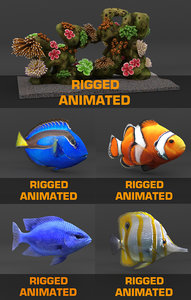 3d coral reef fishes model