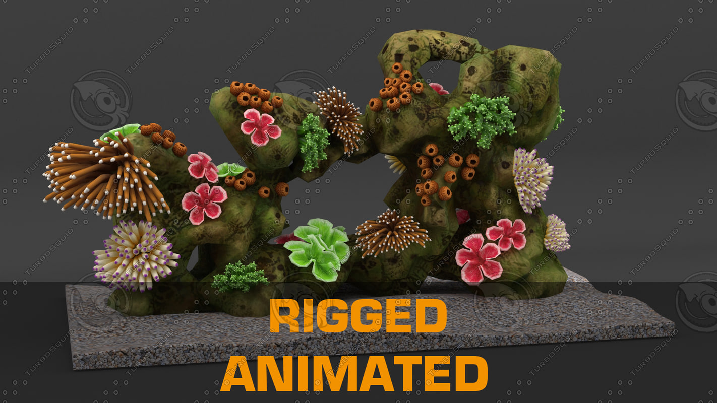- coral reef rigged 3d model
