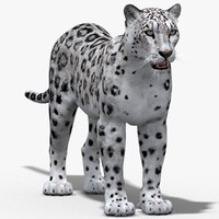 snow leopard 3d 3ds