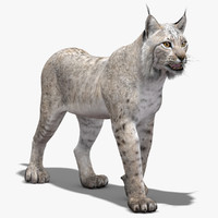 lynx white rigging animation 3d max