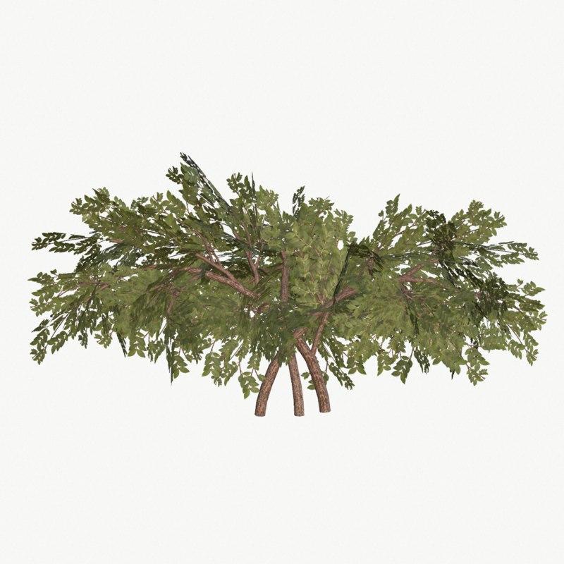 bush type 3 3ds