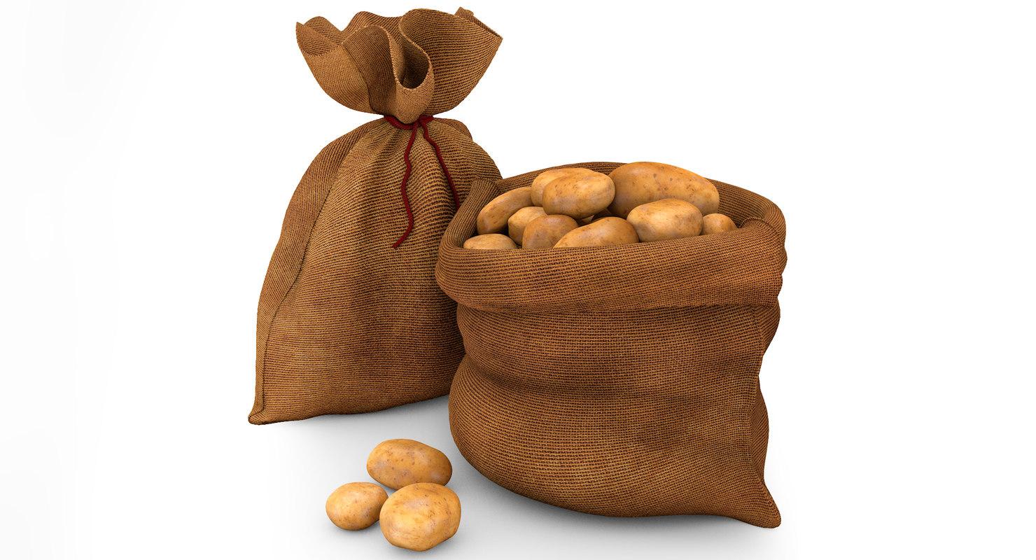 3d modeled sack potatoes model
