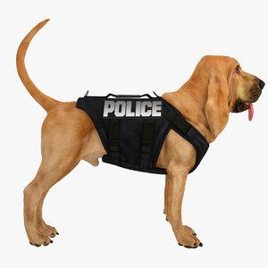 maya bloodhound tawny tan police