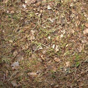 Ground #01 Texture