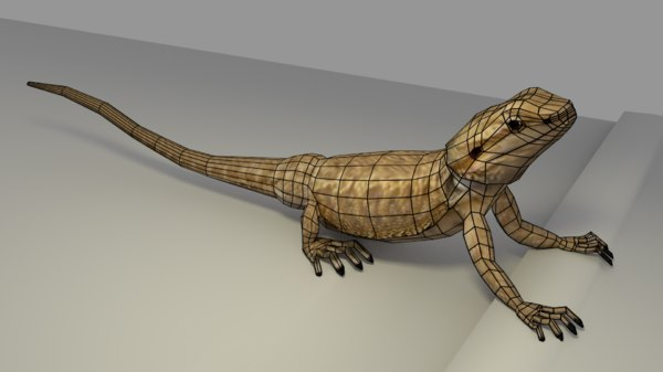 3d model of low-poly dragon bearded