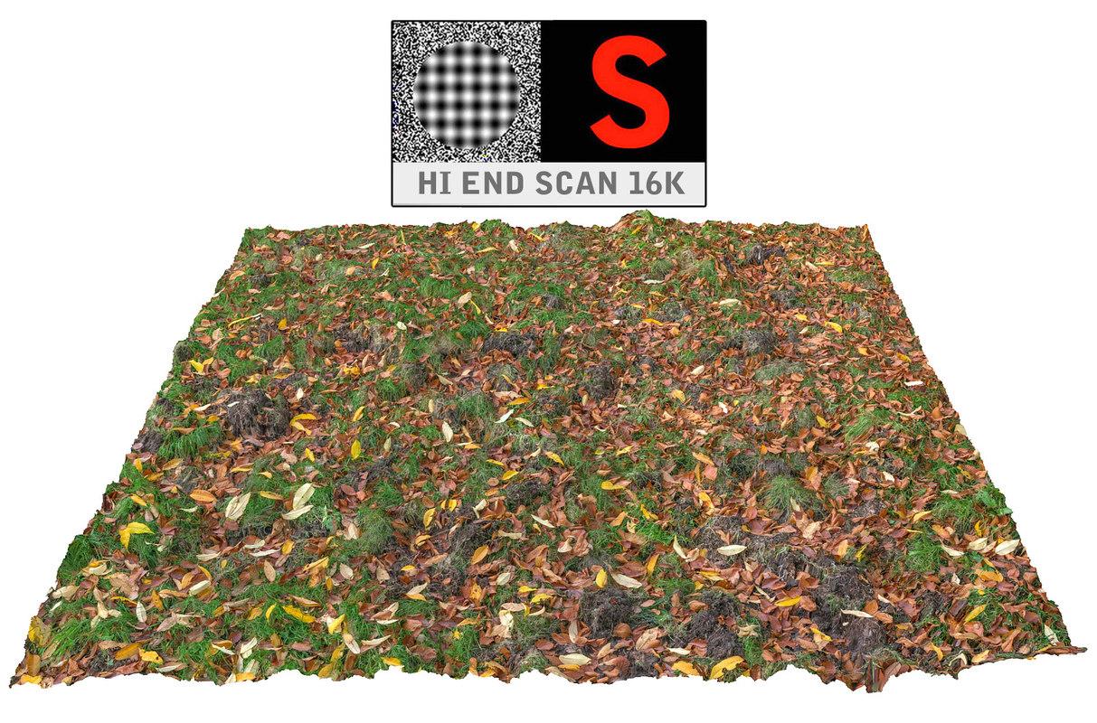 3dsmax autumn lawn ground scan