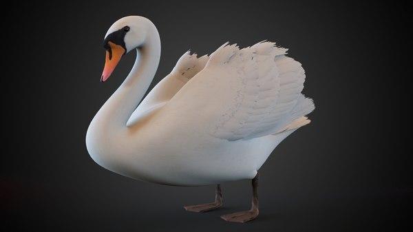 3d model swan