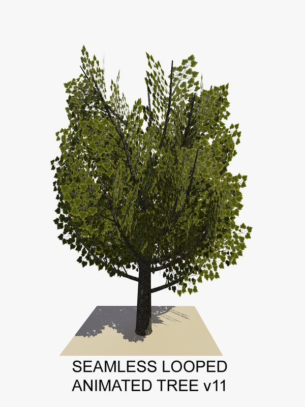 tree animations c4d