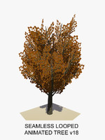 tree animations c4d
