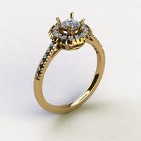 3d model hailo ring