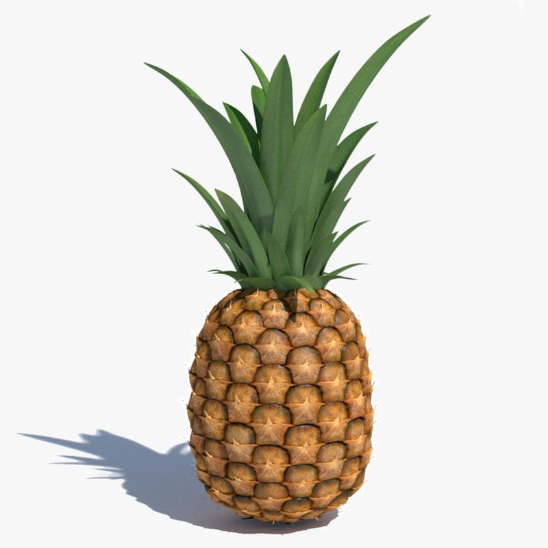 pineapple pine apple max