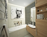 small bathroom interior max