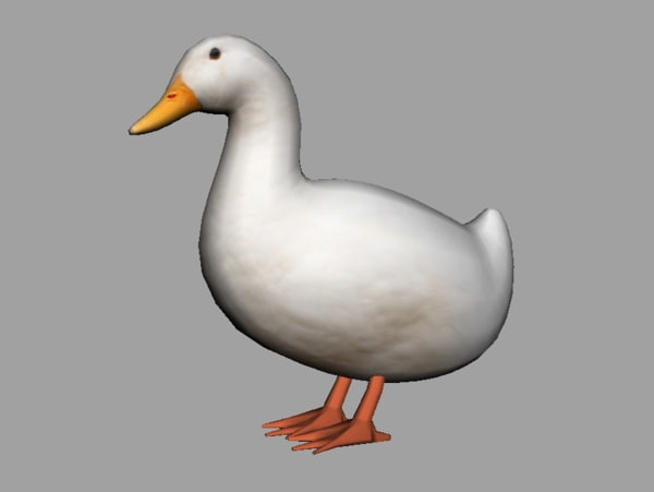 duck rigged fbx