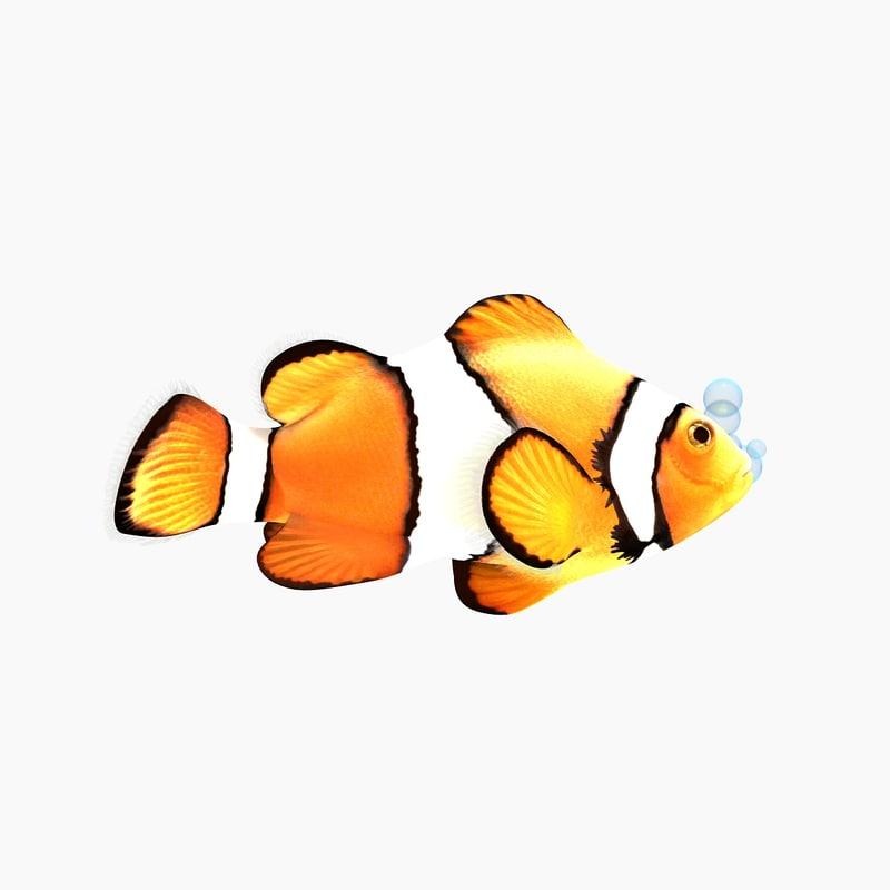 clown fish cartoon rigged max