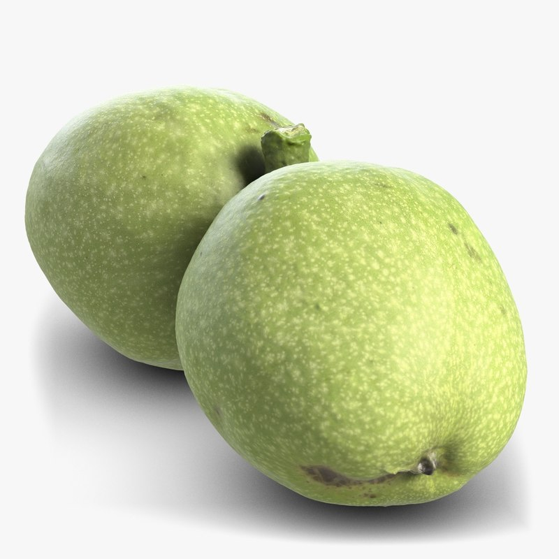 3d model green walnut