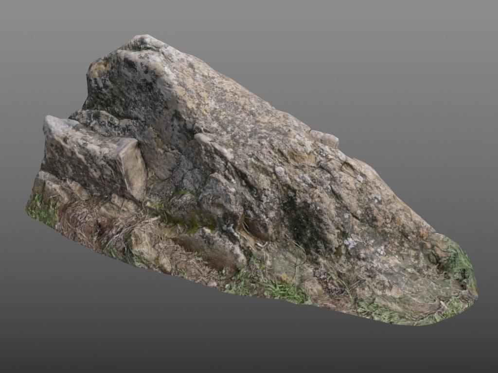 3d rock moss scan