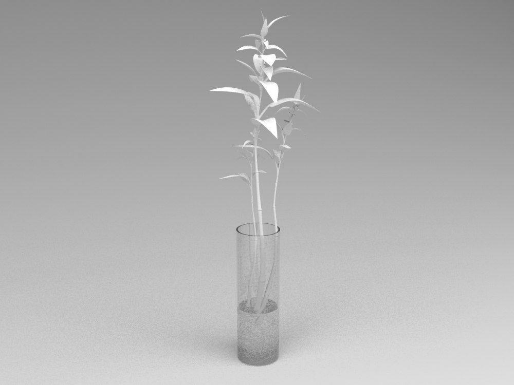 max bamboo vase decor