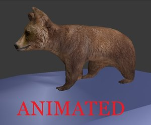 rigged brown bear obj