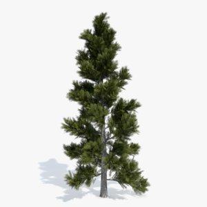 3d max pine tree