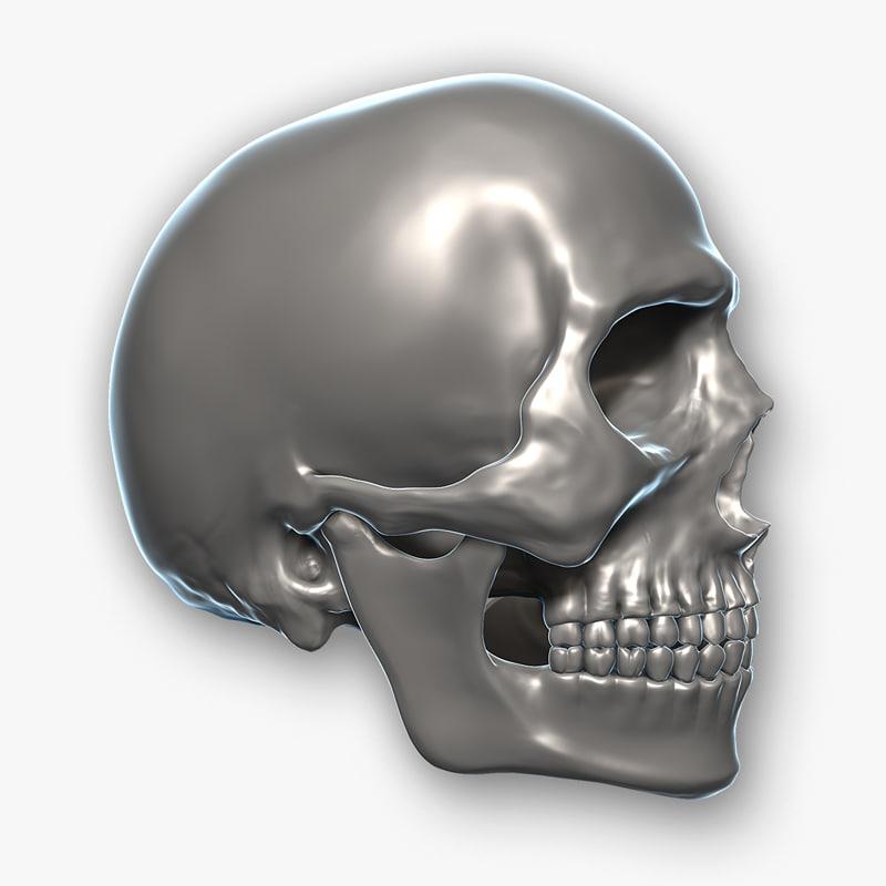 max skull teeth jaw