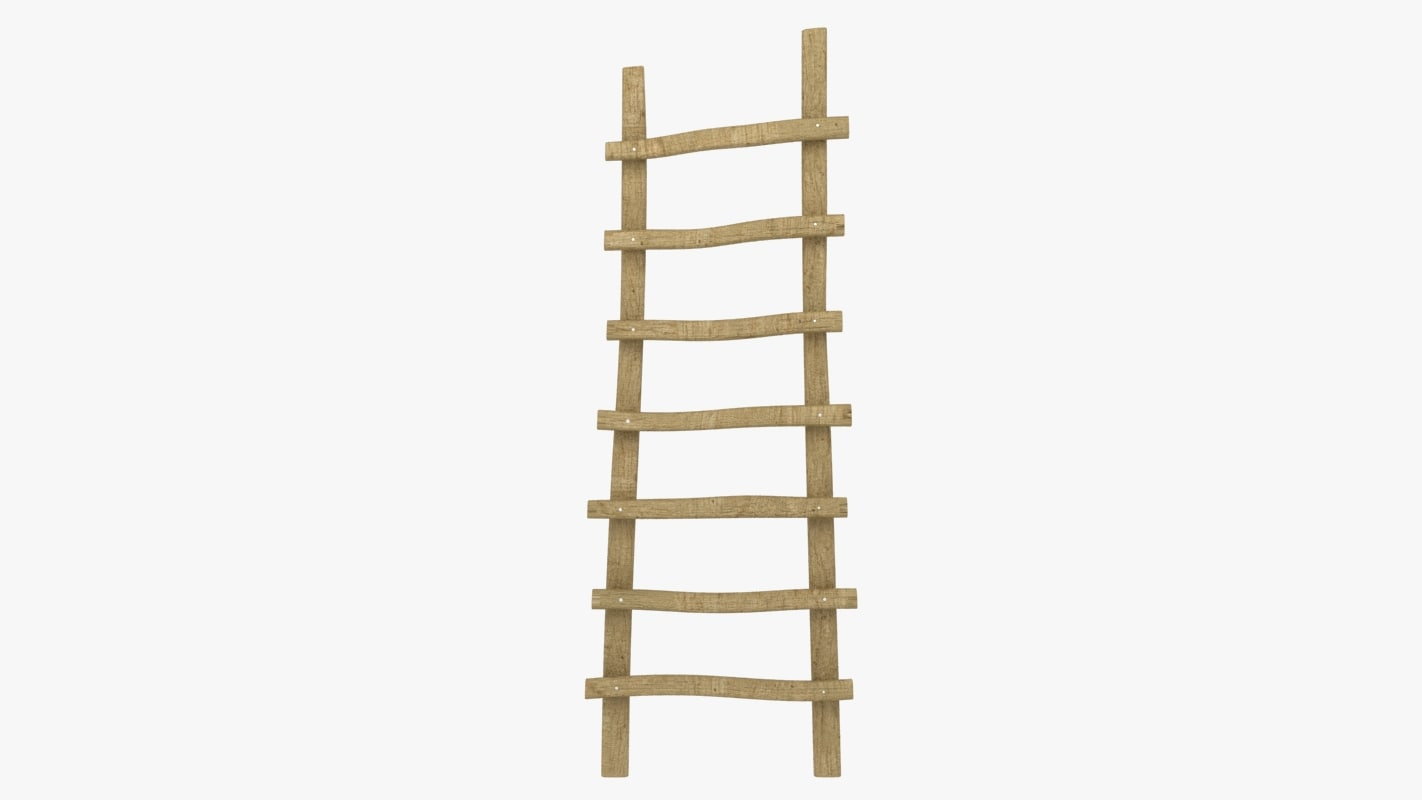 3d max crucked ladder