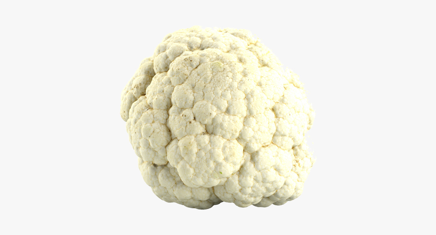cauliflower flower 3d model