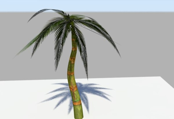 free palm trees 3d model